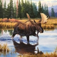 Collector's Focus: Wildlife Art
