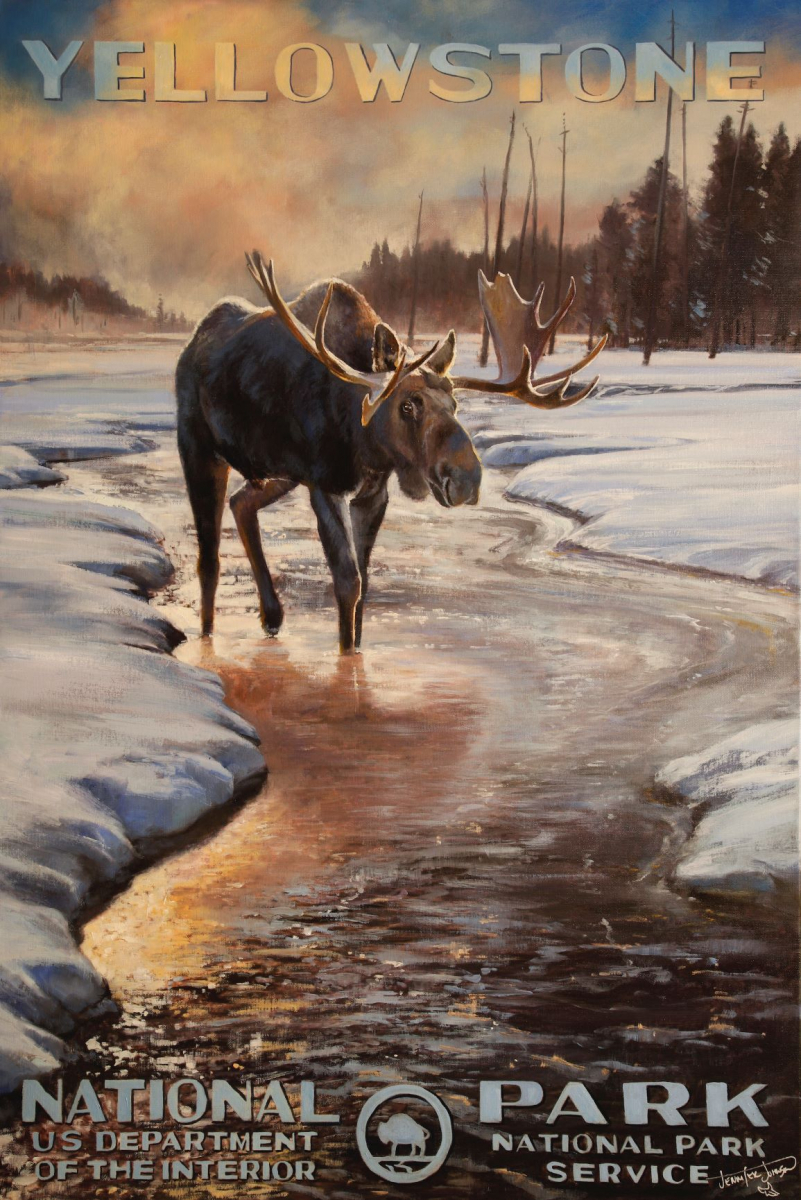 Yellowstone National Park - WInter Moose
