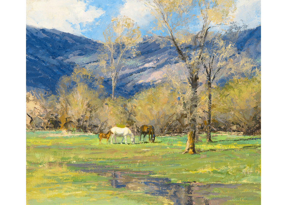Spring on the TE Ranch